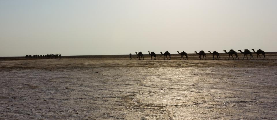 141014-Danakil Depression-Afar-Ethiopia-0369
